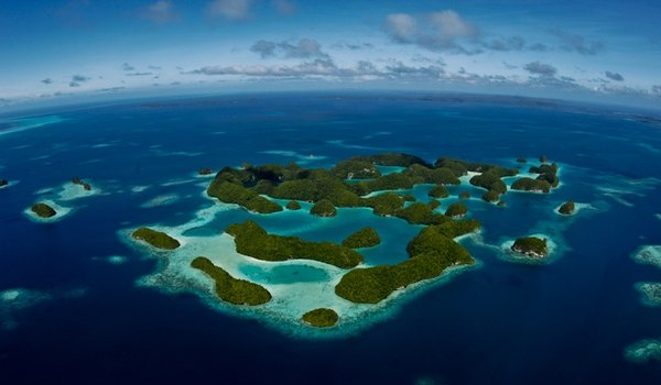 6 Of The Best And Amazing Dive Sites in Palau You Should Dive