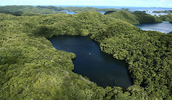 Palau_jellyfish_lake_aerial