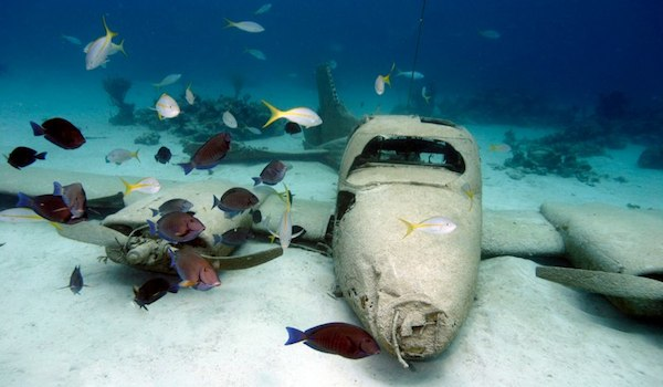 Here Are 4 Amazing Wreck Dives In The Bahamas You Should Dive