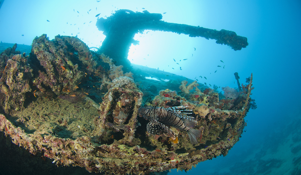 Ship_wreck_photography_red_sea_copy