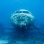 Thumb_wreck_diving_aruba