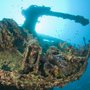 Thumb_ship_wreck_photography_red_sea
