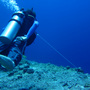 Thumb_reef_hook_blue_corner_palau