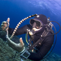Thumb_dive_guide_touching_marine_life