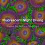 Thumb_fluorescent_night_diving
