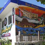 blue angel dive resort cozumel