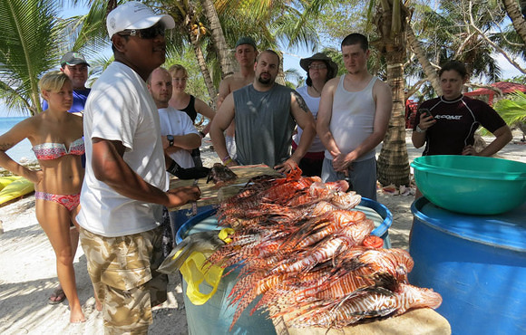 Lionfish Derby Belize with ReefCi