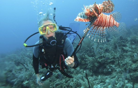 Belize Lionfish Derby with ReefCi