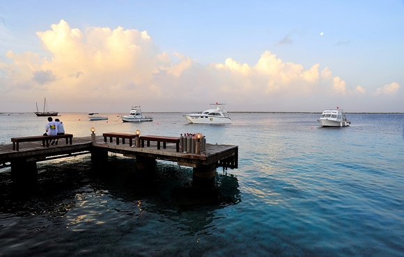 buddy resort dive bonaire