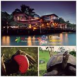 RedMangrove_Lodges