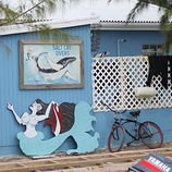 Salt cay divers dive shop