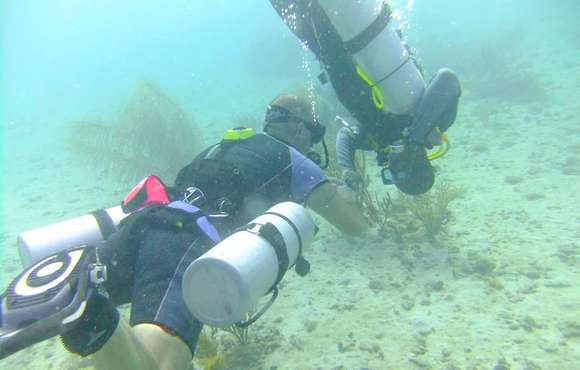 Side mount diving Grenada