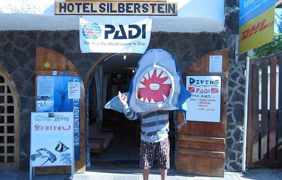 scuba dive with silberstein dive center