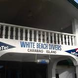 White_beach_divers