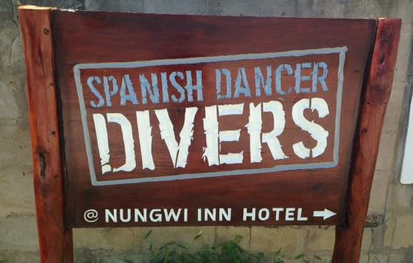 Spanish_Dancer_Divers