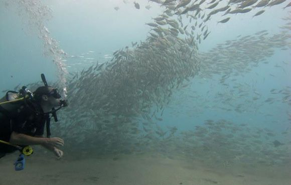 Diver_under_Salang_Jetty