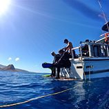 hawaii_boat_dive