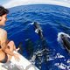pilot_whales_in_front_of_boat